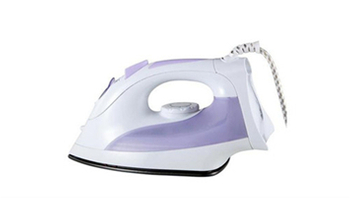 Purchase and Usage of Household Steam Iron